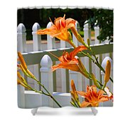 Daylilies On Picket Fence Shower Curtain