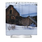 Days Gone By 4 Shower Curtain