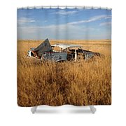 Day's Gone By  Shower Curtain