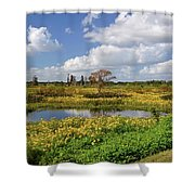Days Of Glory Shower Curtain