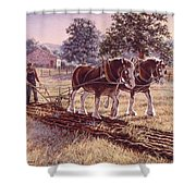 Days Of Gold Shower Curtain by Richard De Wolfe