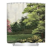 Daytime Color Shower Curtain