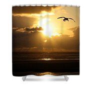 Dazzling Dusk Shower Curtain