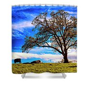 De Hoek Farm Shower Curtain