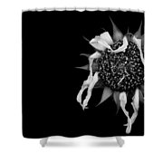 Ballet Flower Shower Curtain