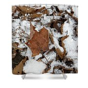 Dead Leaves In The Snow Shower Curtain
