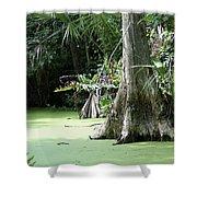 Wild Florida Dead Mans River Shower Curtain