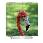 Dead Stare  Shower Curtain