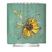 Dead Suflower Shower Curtain
