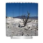 Dead Tree In Yellowstone Park Hot Springs  Shower Curtain
