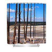 Dead Trees Standing In Hot Springs Within Yellowstone National P Shower Curtain