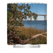 Dead Wood Along Jogging Path Shower Curtain