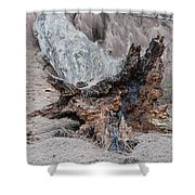 Dead Wood In Color Shower Curtain