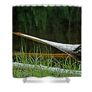 Deadwood And Pine Reflections Shower Curtain