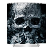 Death Comes To Us All Shower Curtain