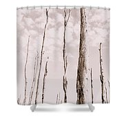Death Of A Forest Shower Curtain
