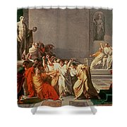 Death Of Julius Caesar Shower Curtain