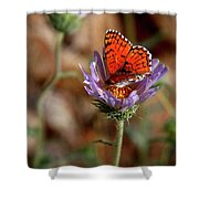 Death Valley Butterfly Shower Curtain