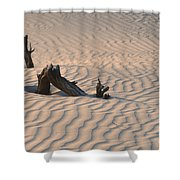 Death Valley Morning Shower Curtain