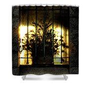 Death's Nursery  Shower Curtain