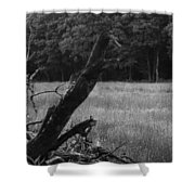 Debris Black And White Shower Curtain