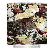 Decadent Urban Red Bricks Painted Grunge Abstract Shower Curtain
