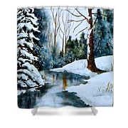 December Beauty Shower Curtain