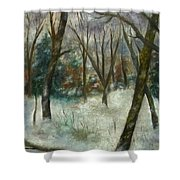 December On Cooper Hill Shower Curtain