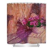 Deck Flowers #2 Shower Curtain