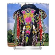 Decorated Indian Elephant Shower Curtain