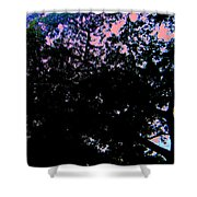 Decorated Sky Shower Curtain