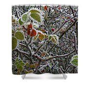 Decorated With Leaves Shower Curtain