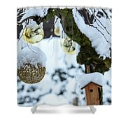 Decorations In The Snow Shower Curtain