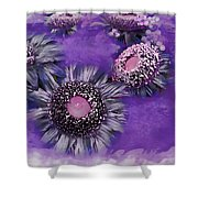 Decorative Sunflowers A872016 Shower Curtain