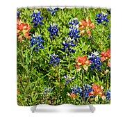 Decorative Texas Bluebonnets Meadow Digital Photo G33117 Shower Curtain