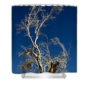 Deep Blue White Tree Shower Curtain