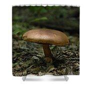 Deep Forest Dweller Shower Curtain
