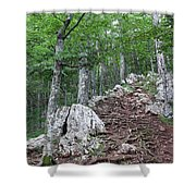 Deep Forest Rocky Path Nature Shower Curtain