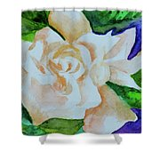 Deep Gardenia Shower Curtain