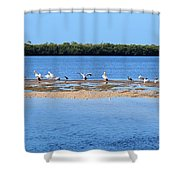 Deep Haven Shower Curtain