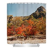 Deep In Mckittrick Canyon - Lost Maples And Ponderosa Pines Against Backdrop Of Guadalupe Mountains  Shower Curtain