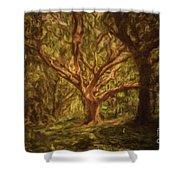 Deep In Sherwood Shower Curtain
