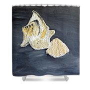 Deep Ocean Seashells Shower Curtain