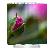 Deep Pink Rose Bud - Rose Bud Shower Curtain