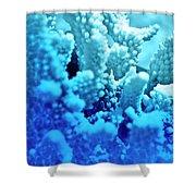 Deep Sea Coral Shower Curtain