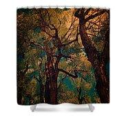 Deep Trees Shower Curtain
