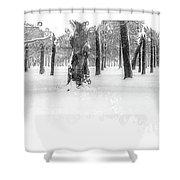 Deep Winter II Shower Curtain