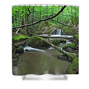 Deep Woods Stream 2 Shower Curtain