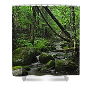 Deep Woods Stream 3 Shower Curtain