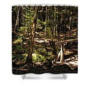 Deep Woods Trail Shower Curtain